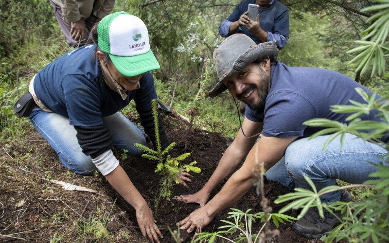 Únete a nuestra misión de restaurar la Tierra.